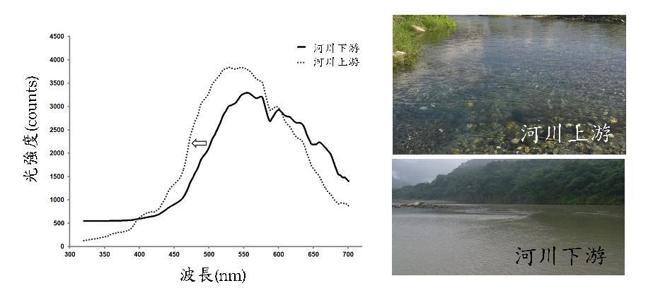 河川上下游光線波長分布圖,圖片來源:海洋中心提供